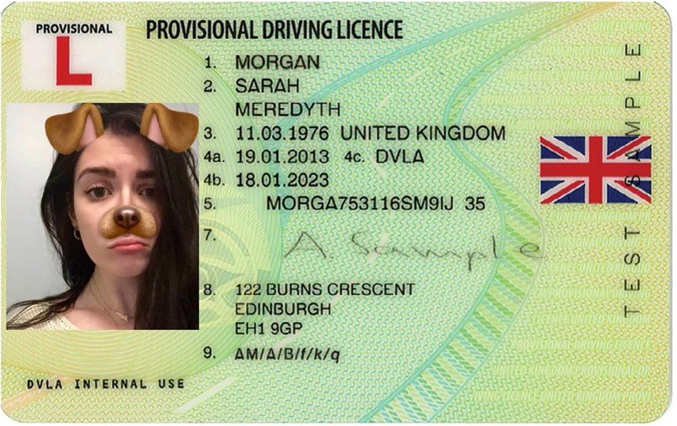 Provisional The Ears Bunny 2019 Licences From To Allow Army Driving Liberation Dundonald –